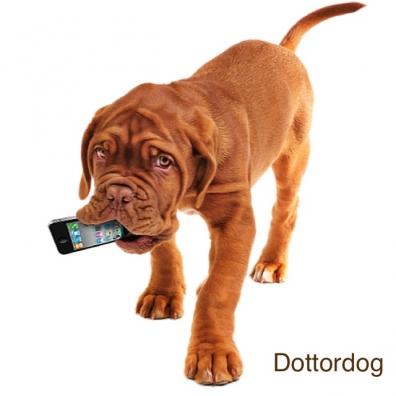 cane mangia smartphone