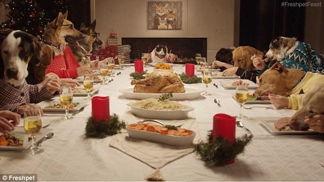 cena natali cane