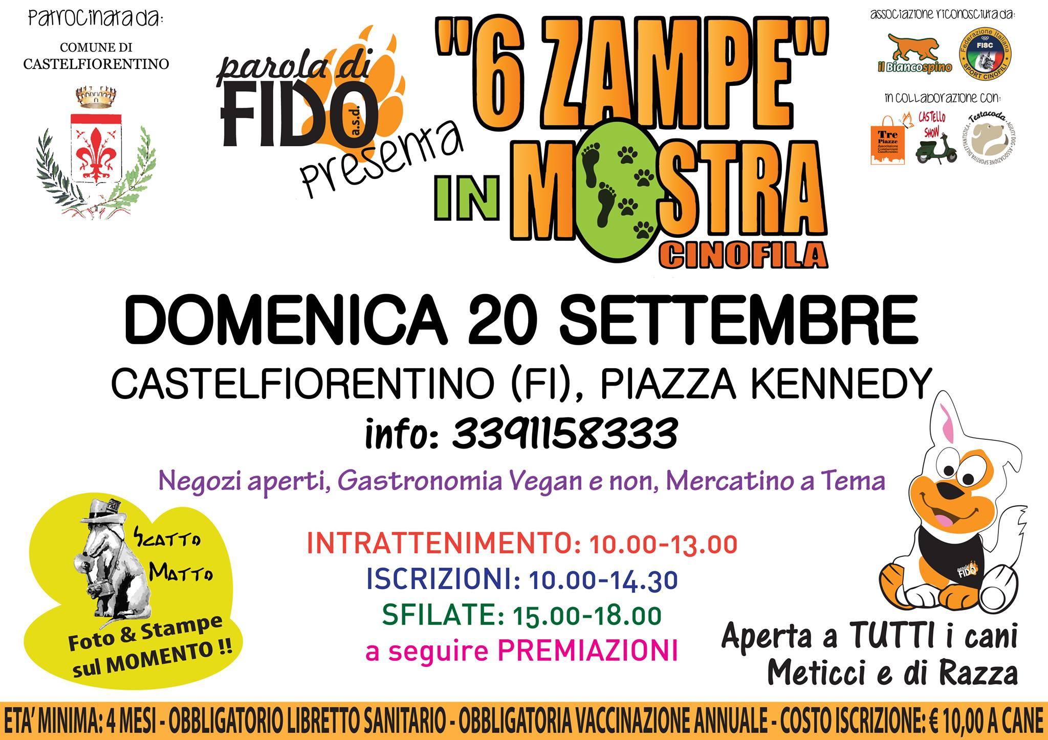 17-09_seizampe