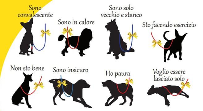 codice-cani-nastrino-giallo